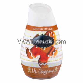 Renuzit Gel Air Freshener Mr Gingersnap 7.0 oz Wholesale