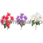 SPIDER DAISY BUSH 15022 FLOWERS WHOLESALE