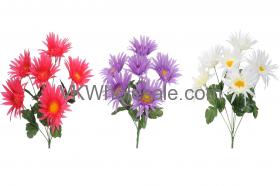 SPIDER DAISY BUSH 15022 FLOWERS WHOLESALE