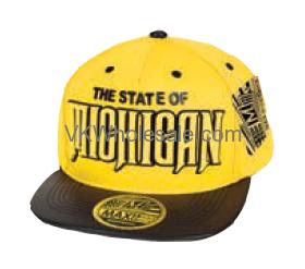 2895fb765 State of Michigan Snapback Summer Hat