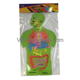 Human Body Puzzle Wholesale